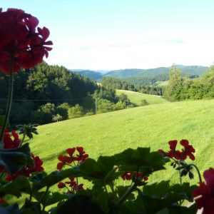 Panorama View over the valleys of the Black Forest