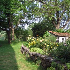 Typical farmers garden with small house and big walnut trees