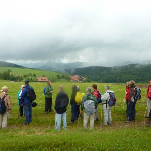 tour de sens group doing a trekking route close to the Black Forest